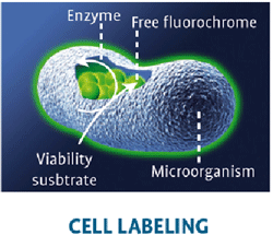 rapid microbiology method for food products microbiological testing