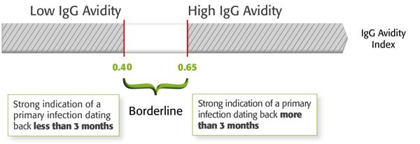 citomegalovirus igg reactivo que significa