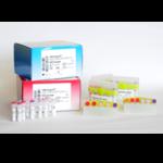 HSV1, HSV2, VZV R-gene®